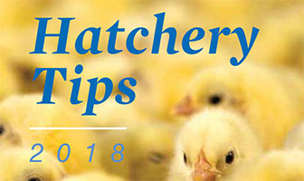 Hatchery Tips 1-28-2018